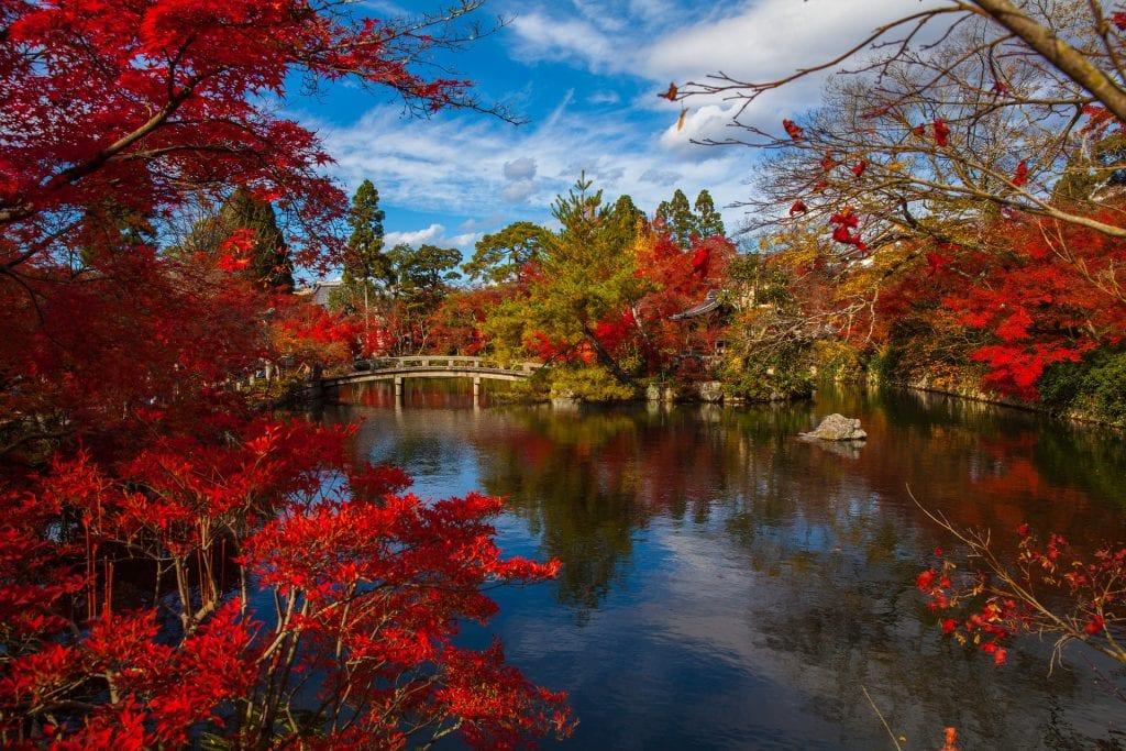 japan in autumn