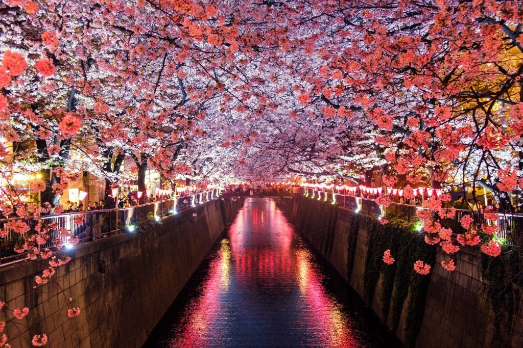 travel with children in japan