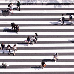 Shibuya crossing on budget japan tour