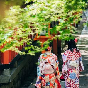Geishas in Kyoto on Japan Budget Tour