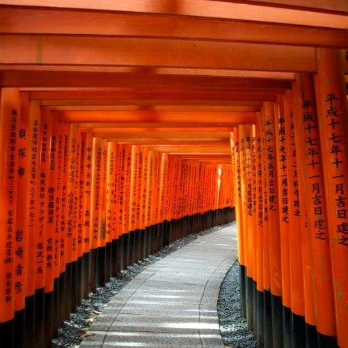 Torii gates - Japan trips