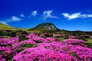 Hallasan south korea