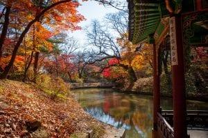 autumn south korea