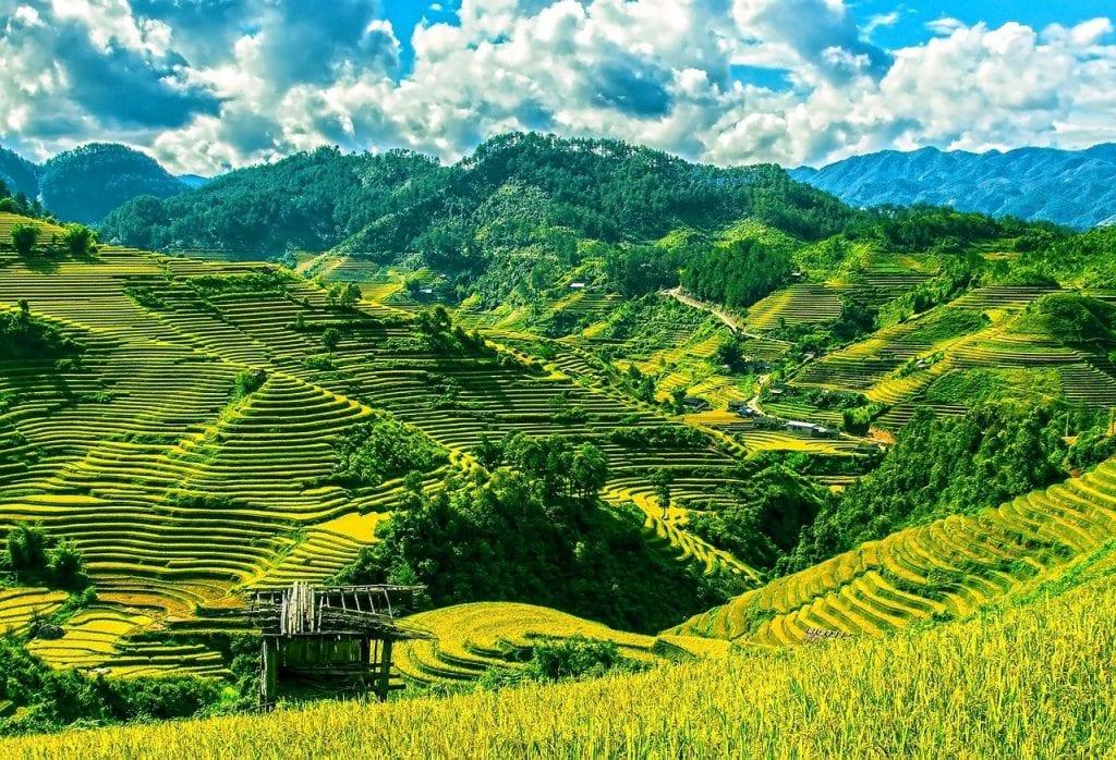 Rice Terraces on Luzon island